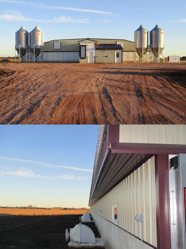Livestock Confinement Boekett Building Supply